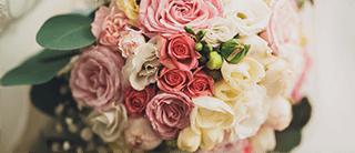 植物&花卉